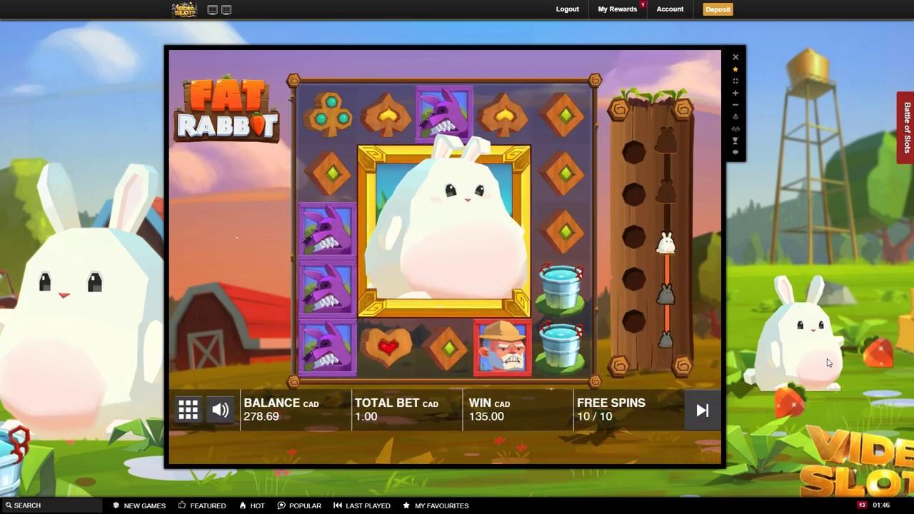 Fat Rabbit interface