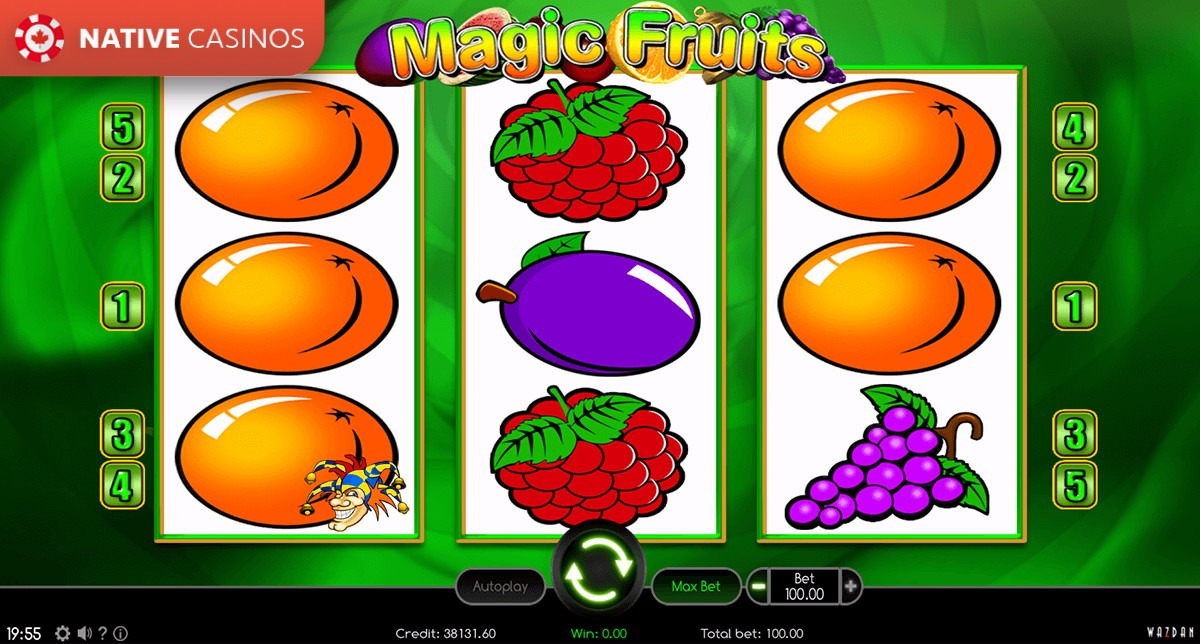 Magic Fruits interface